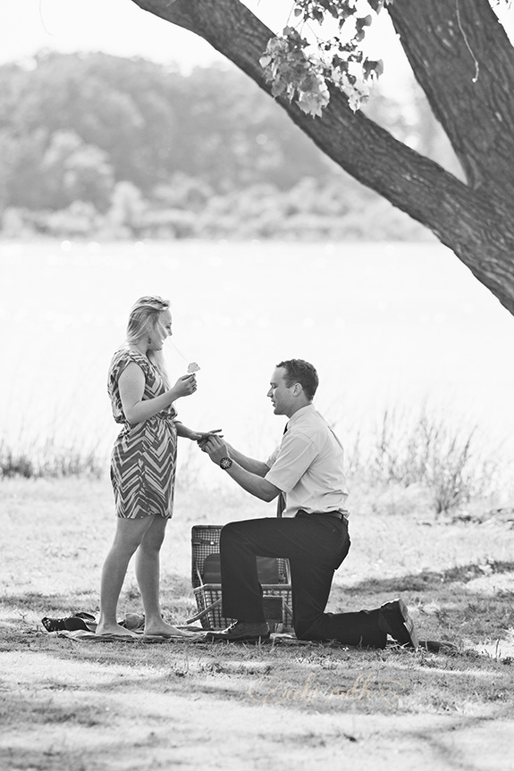 proposal pictures 005